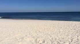 First Australian beach