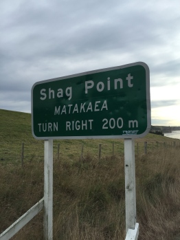 New Zealand takes the top spot with this sign...