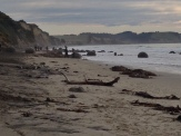The Moeraki Boulders were a bit anticlimactic and we didn't bother going any closer..