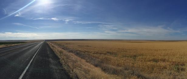 The Palouse region..